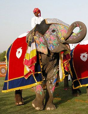 circuit en Inde - voyage rajasthan