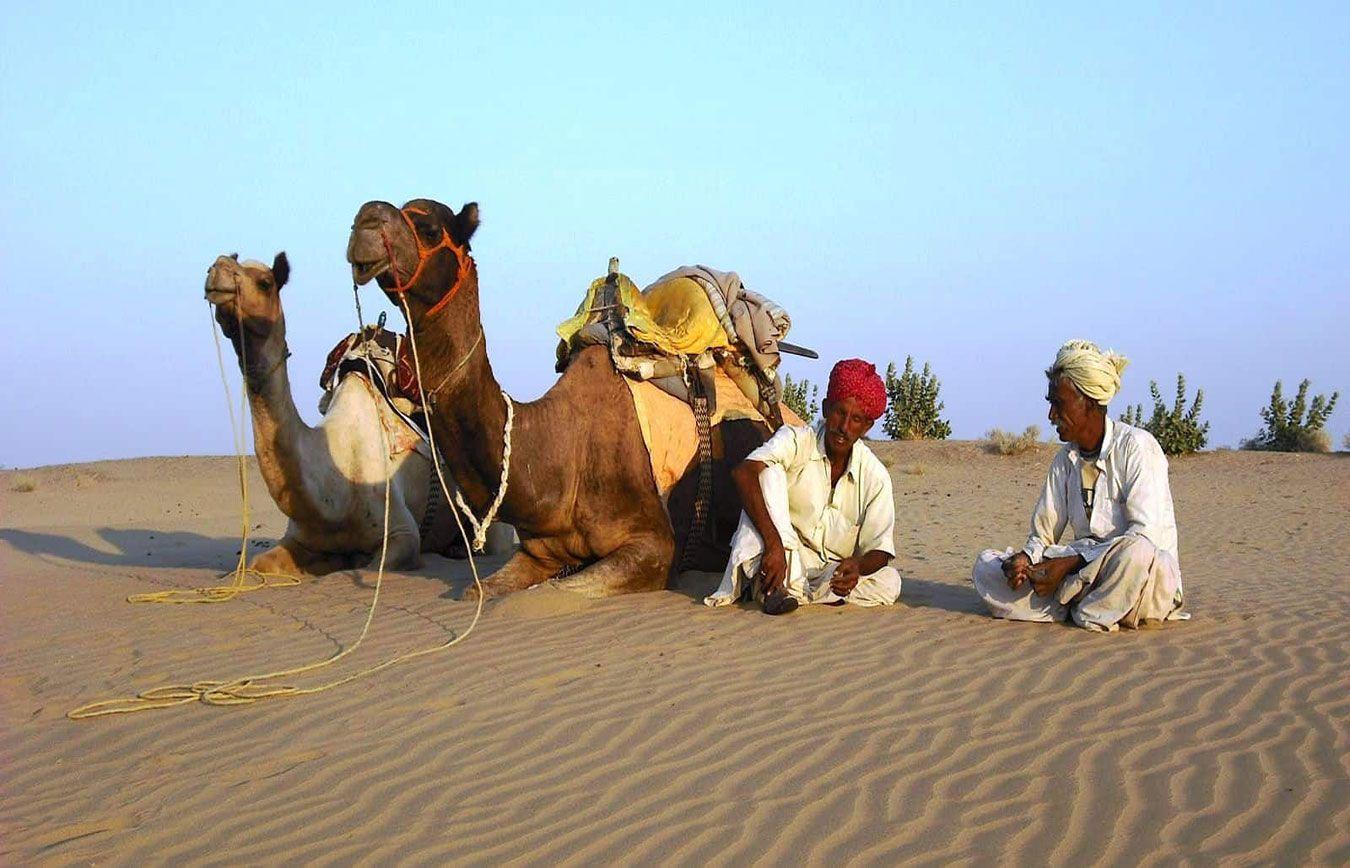 Voyage dans le desert du Thar au Rajasthan en Inde